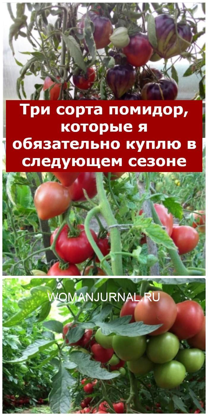 Три сорта помидор, которые я обязательно куплю в следующем сезоне