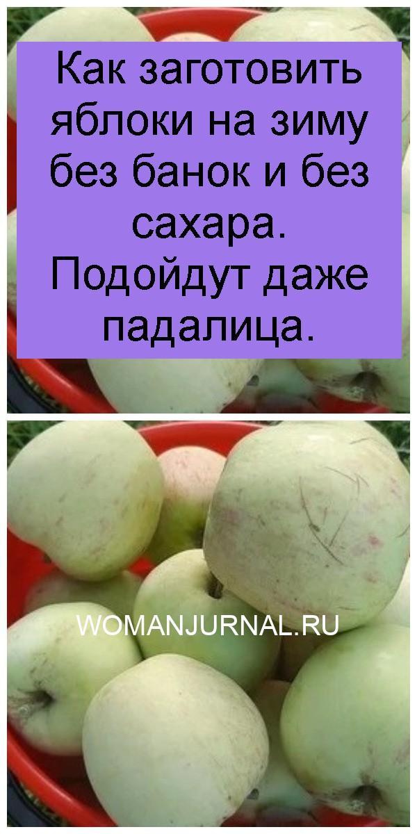 Как заготовить яблоки на зиму без банок и без сахара. Подойдут даже падалица 4