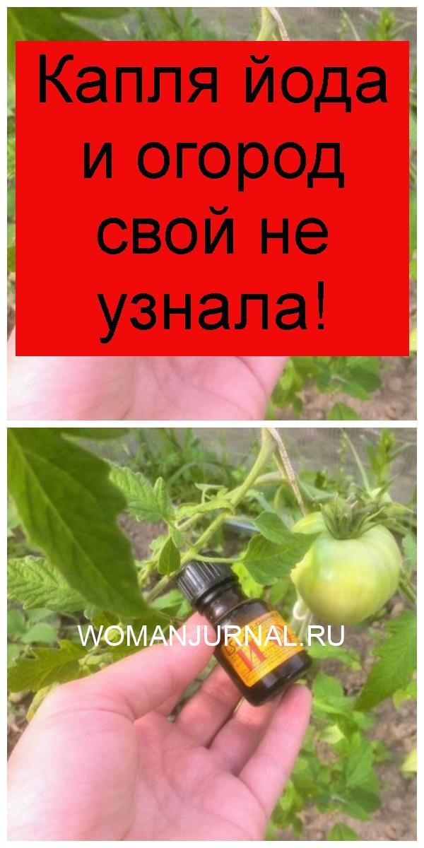 Капля йода и огород свой не узнала 4