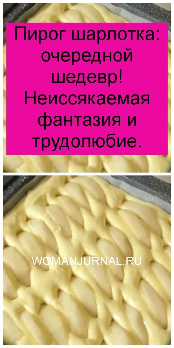 Пирог шарлотка: очередной шедевр! Неиссякаемая фантазия и трудолюбие 4