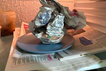 Зачем я кладу мокрую газету в холодильник. Жалею, что раньше не знала об этом способе 1